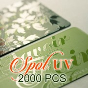 2000 PCS Spot UV Business Card