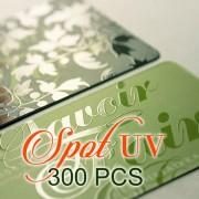 300 PCS Spot UV Business Card