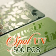 500 PCS Spot UV Business Card