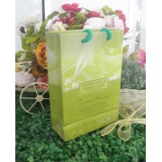 Paper Bag L Tepak Renjis Green