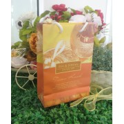 Paper Bag L Tepak Renjis Orange
